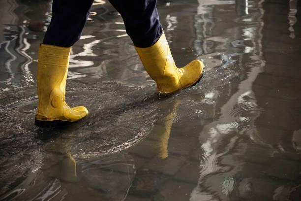 Commercial Water Damage Restoration in Buffalo, SC (2381)