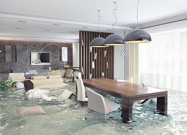 Water Damage Restoration in Wesley Chapel, NC (3451)