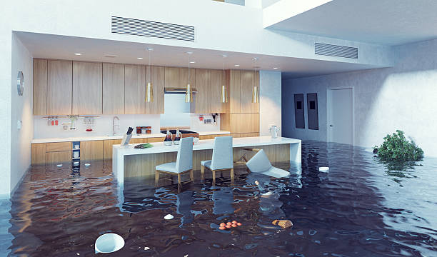 Water Damage Cleanup in Stallings, NC (7323)