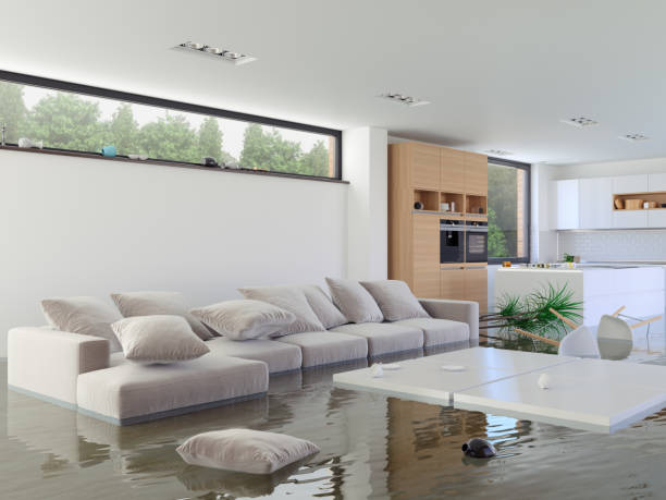 Water Damage Cleanup in Lake Wylie, SC (5929)