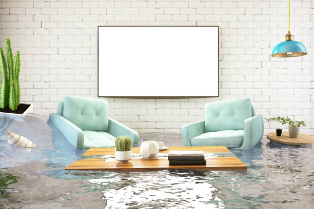 Water Damage Cleanup in Lake Wylie, SC (9734)