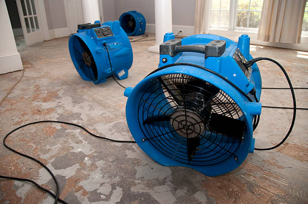 Water Mitigation in Carlisle, SC (9259)